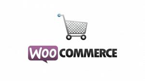 Sklep internetowy na WordPress