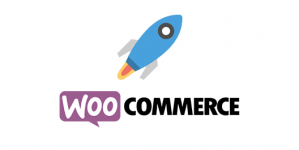 pakiet-start-woocommerce