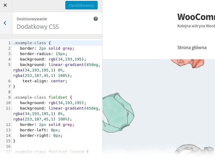 custom CSS w Personalizacji